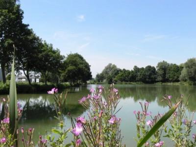 les étangs de Blangy